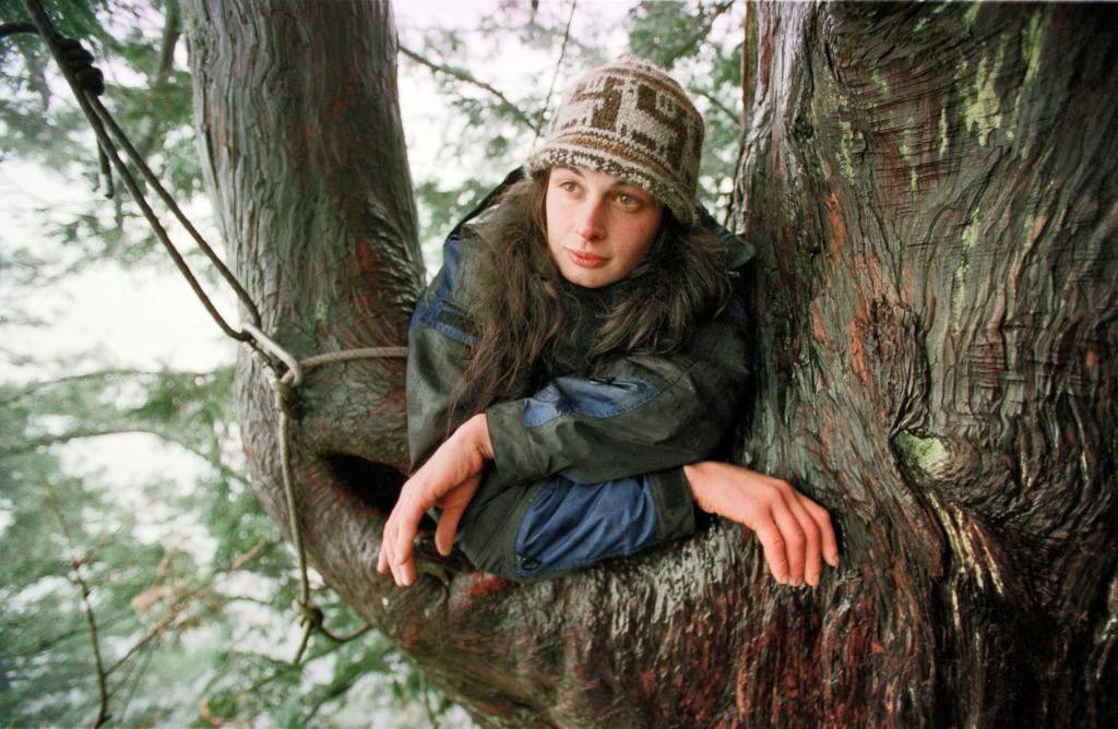 Julia Butterfly Hill, environmental activist in tree