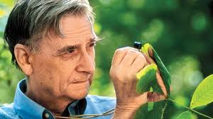 December Book Review: The Creation: An Appeal To Save Life on Earth by E.O. Wilson