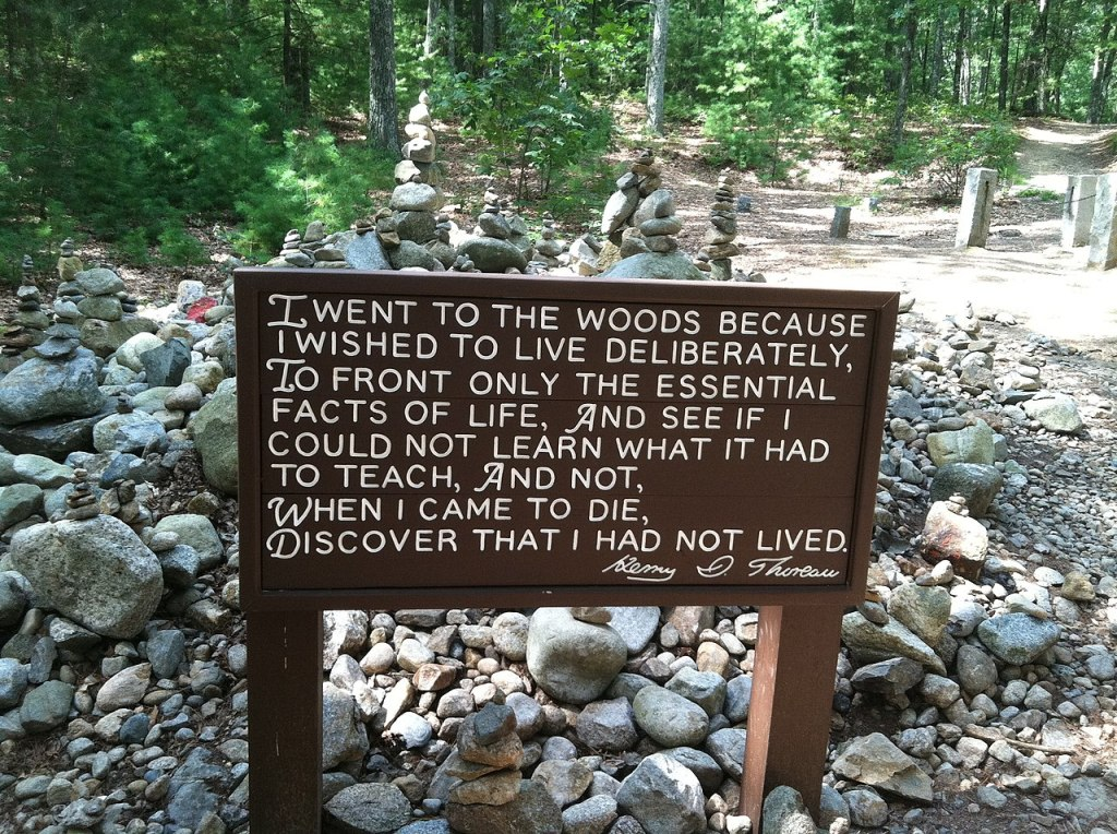 "Henry David Thoreau's sign in the woods over rocks with trees in the background: "" I went to the woods because..."""
